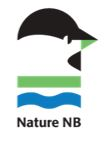 Nature NB